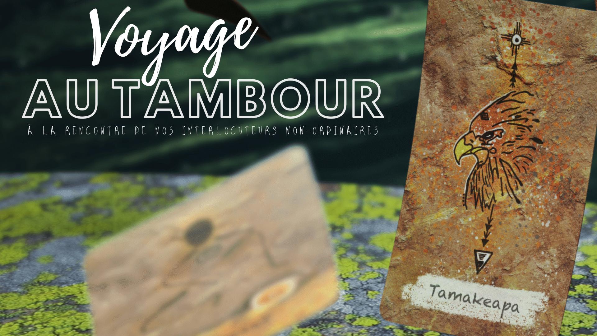 Le Voyage au tambour : une expérience chamanique